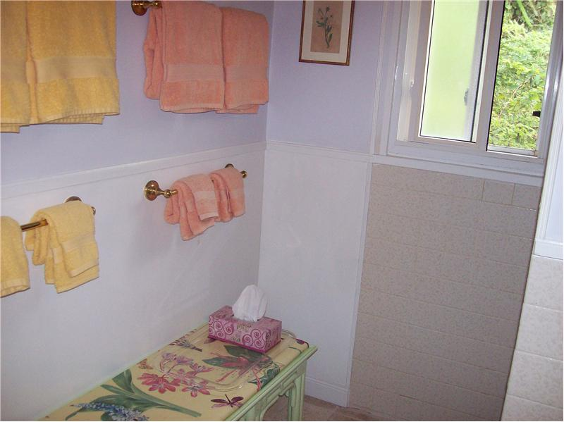 Guest Cottage Shower