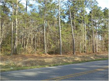  Tract 33 Hwy. 50, Little River, SC