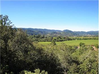 View of Dry Creek Valley from Kitchen